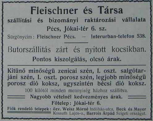 fleischner